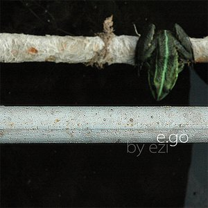 Image for 'e.go'