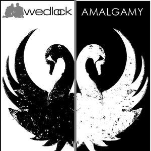 Image pour 'Amalgamy'