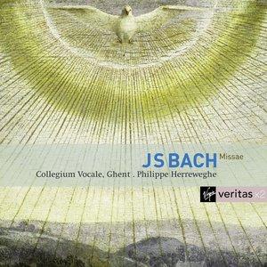 Image for 'Bach : Masses BWV 233-235, Sanctus BWV 238'