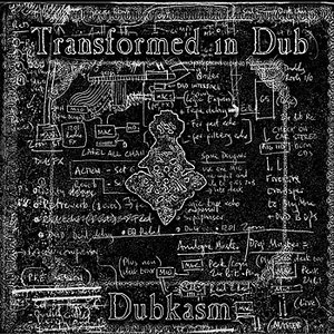 Image for 'Transformed in Dub'