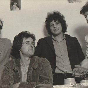 Bild för 'The Fans'