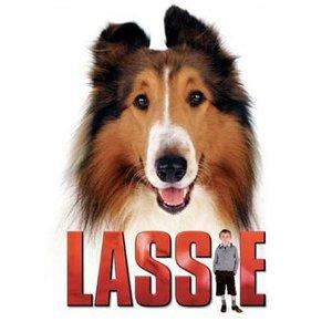Image for 'Lassie'