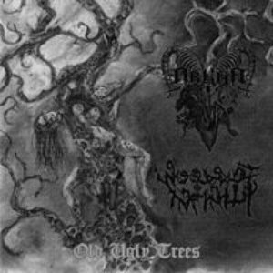 Image for 'Old Ugly Trees'
