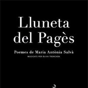 Image for 'Lluneta Del Pagès'