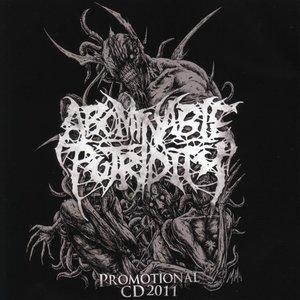 Immagine per 'Promotional CD 2011'