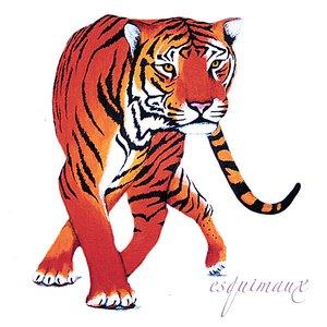 Imagen de 'Tiger'