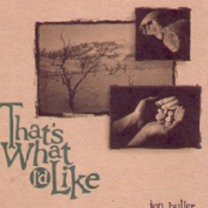 Image for 'That's What I'd Like'