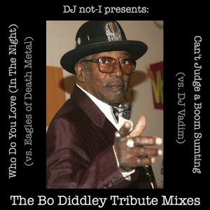Image for 'The Diddley Tribute Mixes'