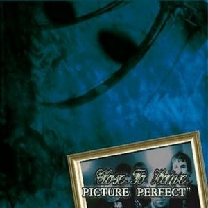 Image for 'Picture Perfect'