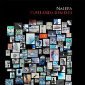 Image for 'Flatlands (Remixes)'
