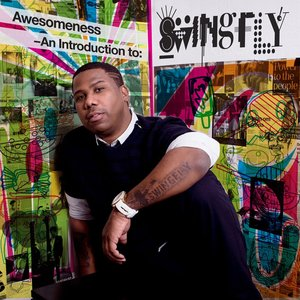 Immagine per 'Awesomeness -An Introduction to Swingfly'