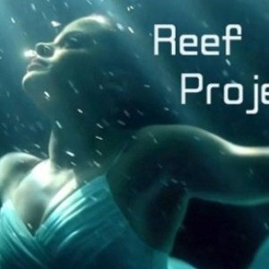 Image for 'Reef Project'