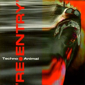 Image for 'Re-entry (disc 2)'