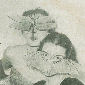 Image for 'Vaaralliset Lelut'