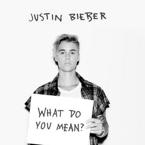 Imagem de 'What Do You Mean?'