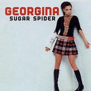 Image for 'Sugar Spider'