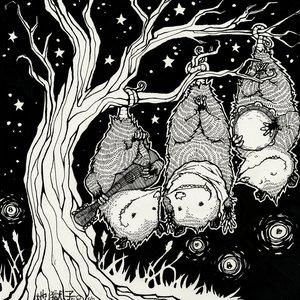 Bild för 'Adventure Adventure'