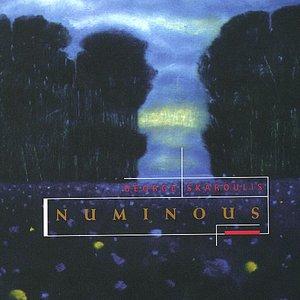 Image for 'Numinous'