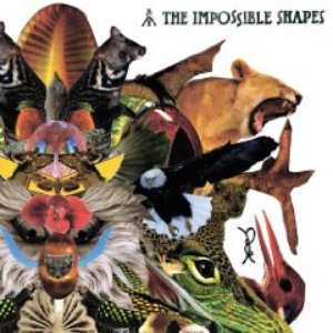 Image for 'The Impossible Shapes'