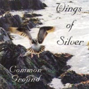 Image for 'Wings of Silver'