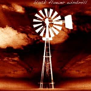 Image for 'Black Flower Windmill'