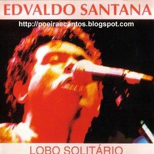 Imagen de 'Lobo Solitário'