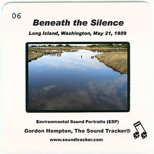 Image for 'Beneath the Silence (Long Island, Washington, May 21, 1989)'
