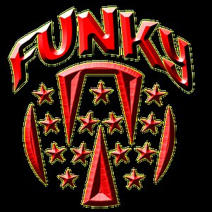 Image for 'The Funky W'