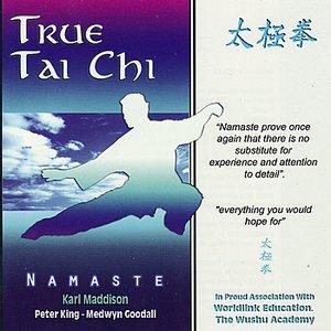 Image for 'True Tai Chi'
