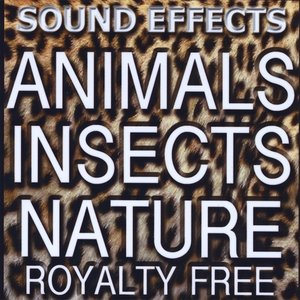 Image for 'Animal Sound FX, Insects and Nature'