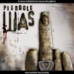 Image for 'Volumin IV: Pierdolę Was'