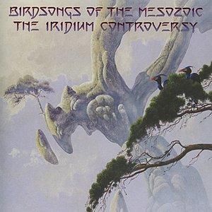 Image for 'The Iridium Controversy'