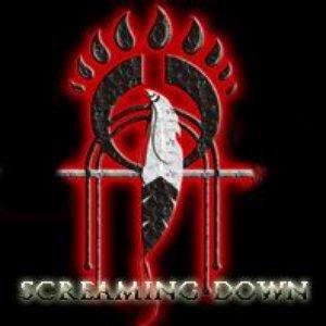 Bild für 'Screaming Down'