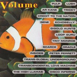 Image for 'Volume Ten'