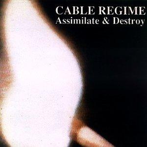 Imagem de 'Assimilate & Destroy'
