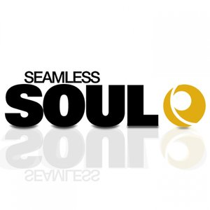 Image for 'Time in Motion (feat. Sophie Cairo) [Seamless Soul]'