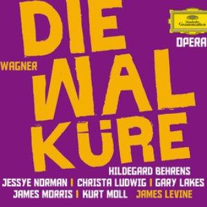 Image for 'Wagner: Die Walküre'