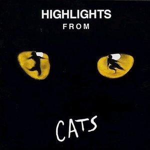Bild för 'Highlights From Cats'