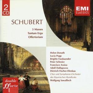 Image for 'Schubert: Masses'