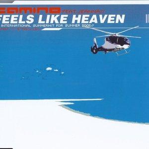 Image for 'Feels Like Heaven'