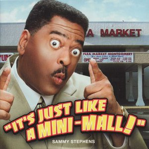 Image for 'It's Just Like A Mini-Mall'