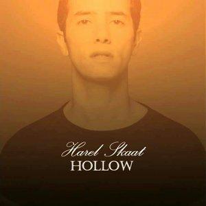Bild für 'Hollow'