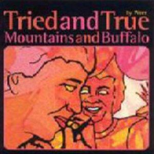 Image pour 'Mountains and Buffalo'