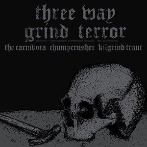 Image pour 'Three Way Grind Terror'