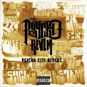 Image for 'Psycho City Blocks'