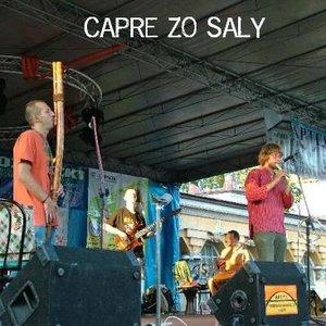 Image for 'Capre Zo Saly'