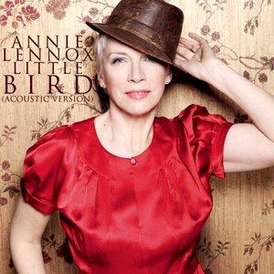 Immagine per 'Little Bird (Acoustic Version)'