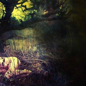 Imagem de 'The Apple Never Falls Far From The Tree'