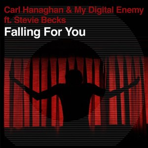 Immagine per 'Falling For You'