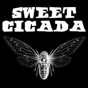 Image for 'Sweet Cicada'